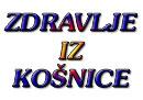 Zdravlje-iz-kosnice_1231496687